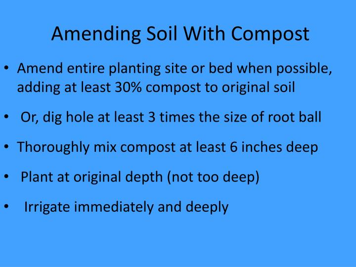 Amending Soil With Compost