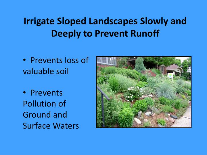 Irrigate Sloped Landscapes Slowly and Deeply to Prevent Runoff