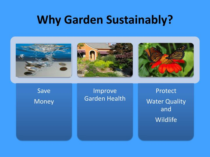 Why Garden Sustainably?
