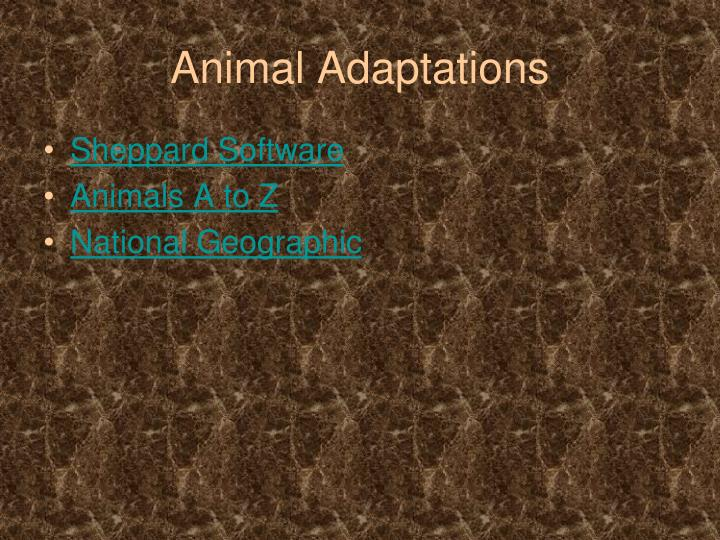 Animal adaptations1