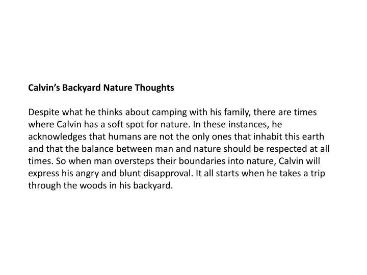 Calvin's Backyard Nature