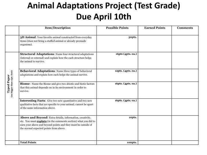 Animal Adaptations Project (Test Grade)
