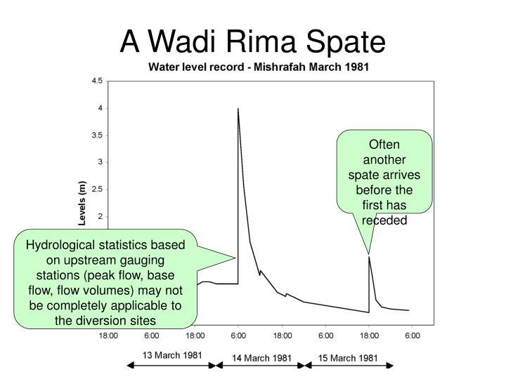 A Wadi Rima Spate