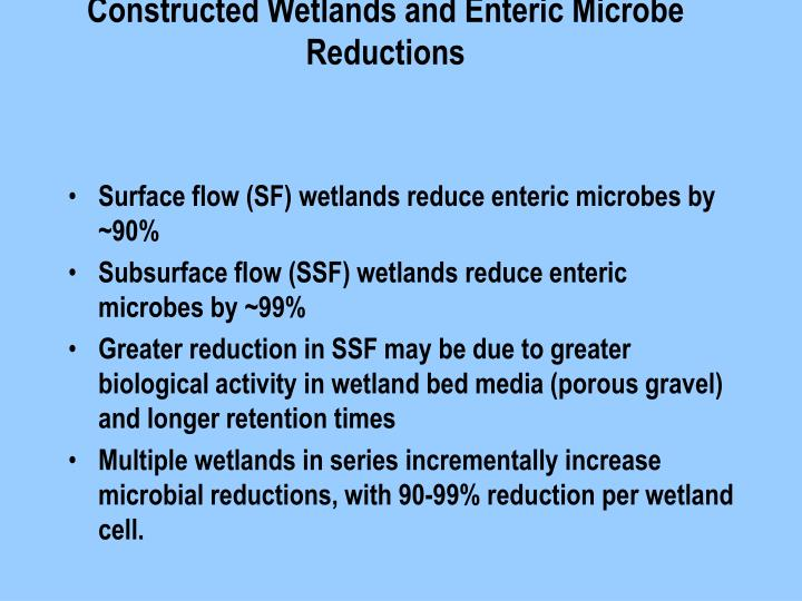 Constructed Wetlands and Enteric Microbe Reductions