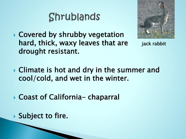 Shrublands