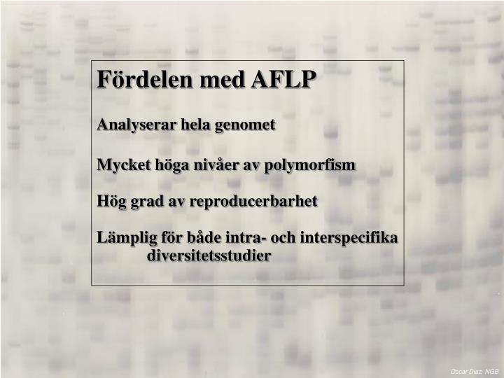Fördelen med AFLP