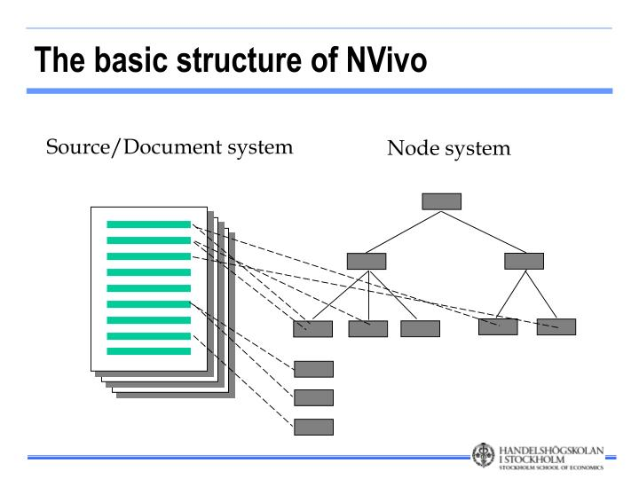 The basic structure of NVivo