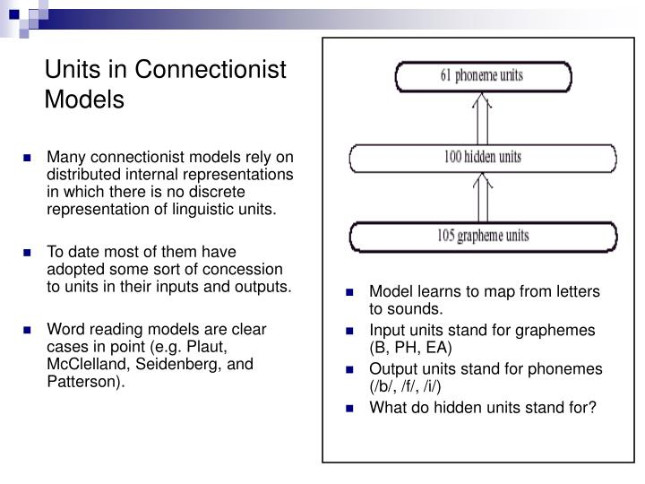 Many connectionist models rely on distributed internal representations in which there is no discrete representation of linguistic units.
