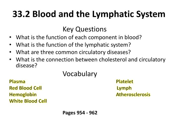 33 2 blood and the lymphatic system