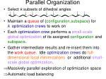 parallel organization