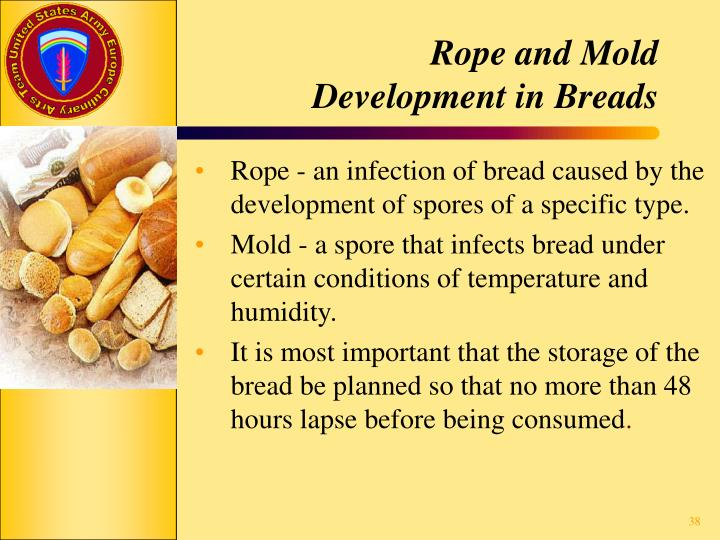 Rope and Mold