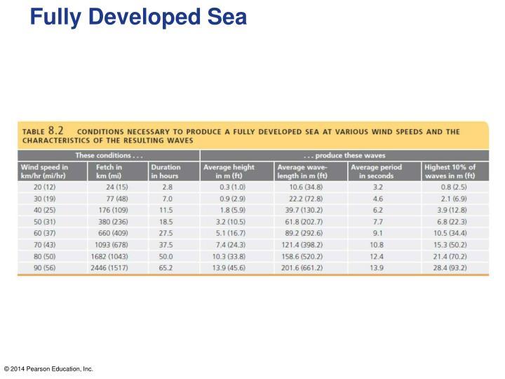 Fully Developed Sea