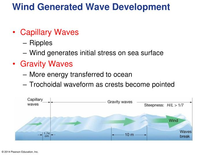 Wind Generated Wave Development