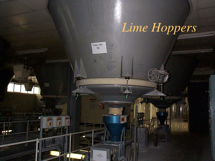 Lime Hoppers