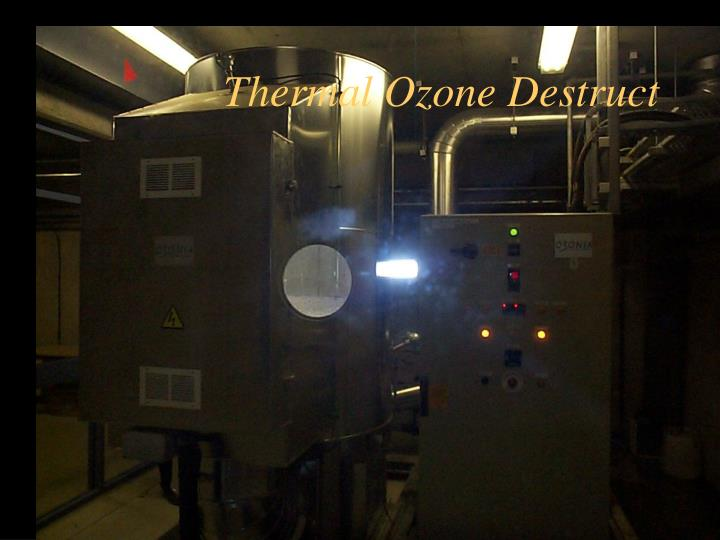 Thermal Ozone Destruct