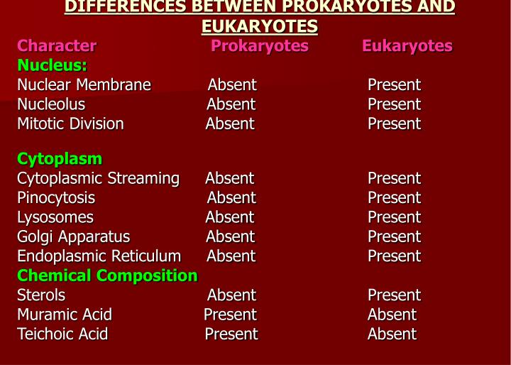 DIFFERENCES BETWEEN PROKARYOTES AND EUKARYOTES