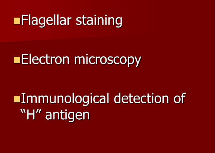 Flagellar staining