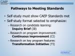 pathways to meeting standards
