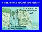 caves blowholes arches stacks 4