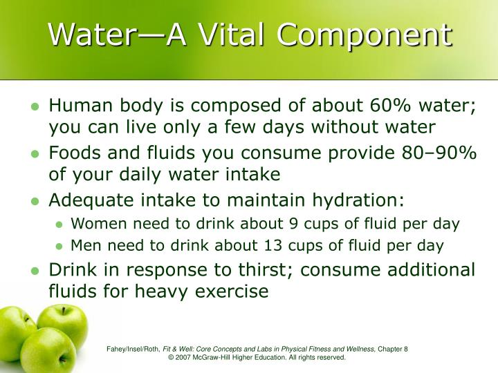 Water—A Vital Component