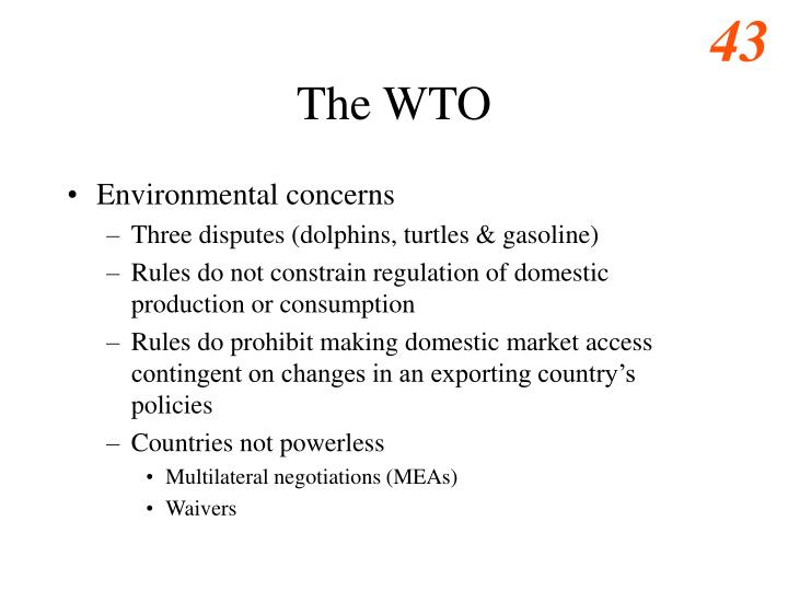 The WTO