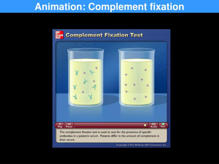 Animation: Complement fixation