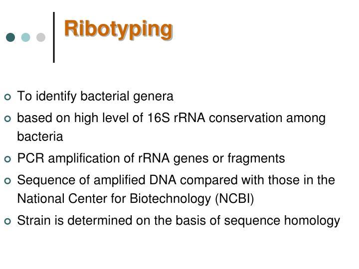 Ribotyping