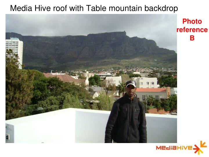 Media Hive roof with Table mountain backdrop