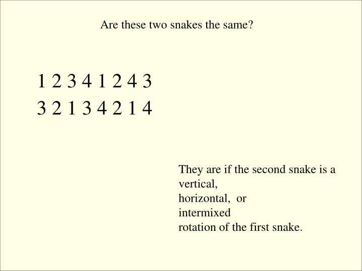 Are these two snakes the same?