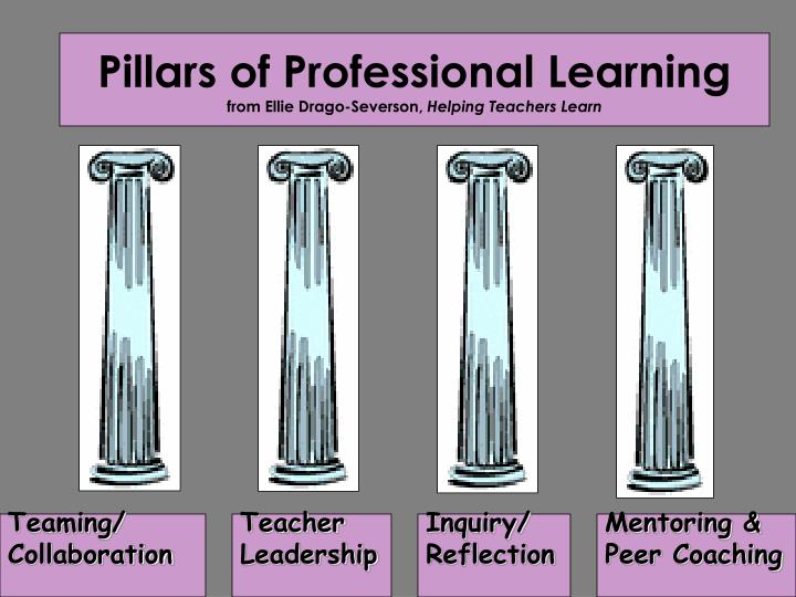 Pillars of Professional Learning