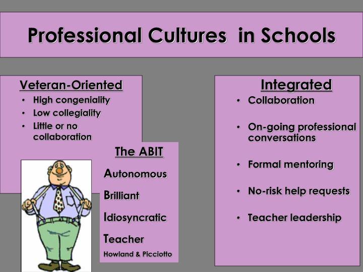 Professional cultures in schools