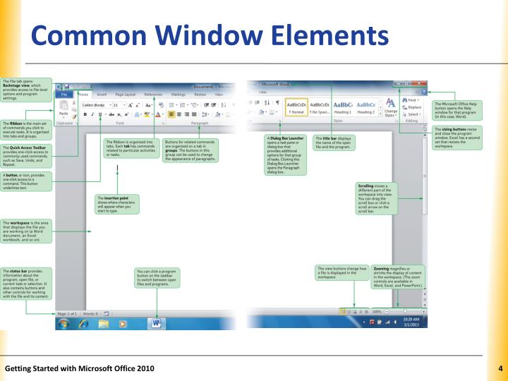 Common Window Elements