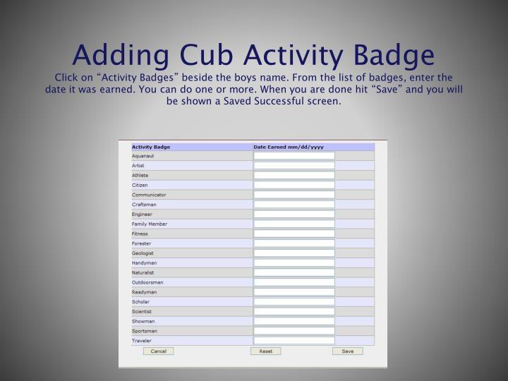 Adding Cub Activity Badge