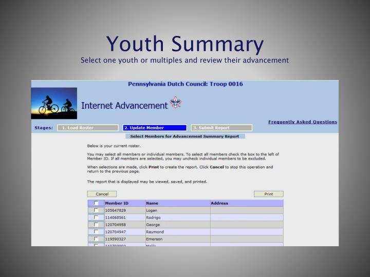 Youth Summary