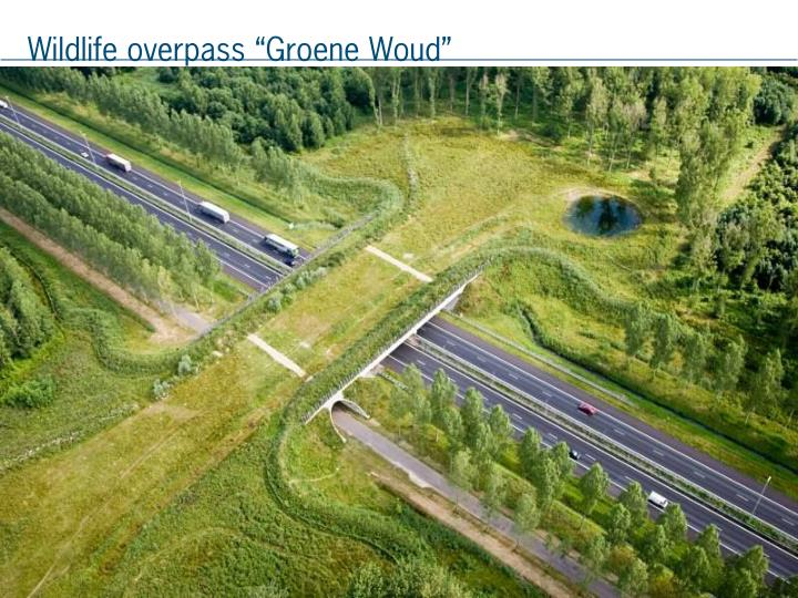 "Wildlife overpass ""Groene Woud"""