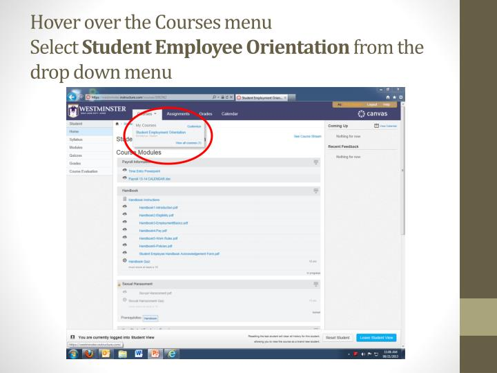 Hover over the courses menu select student employee orientation from the drop down menu