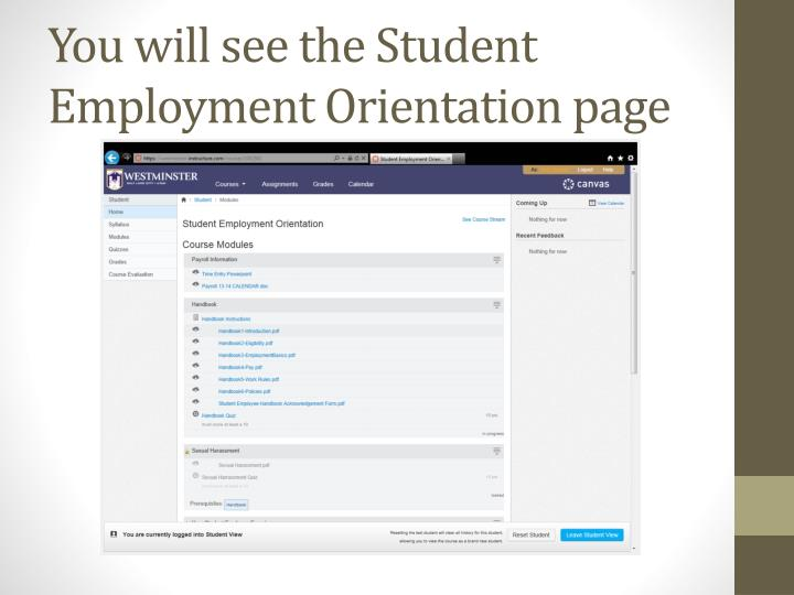 You will see the Student Employment Orientation page