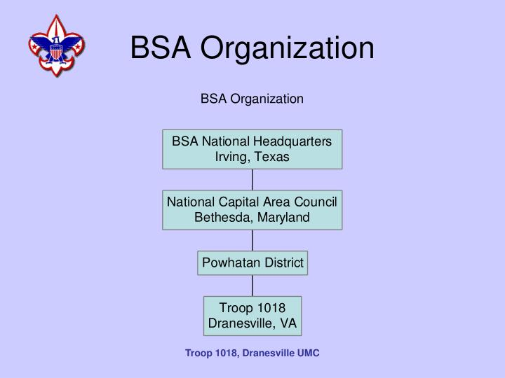 BSA Organization