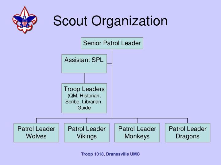 Scout Organization