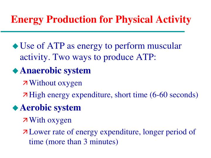 Energy Production for Physical Activity