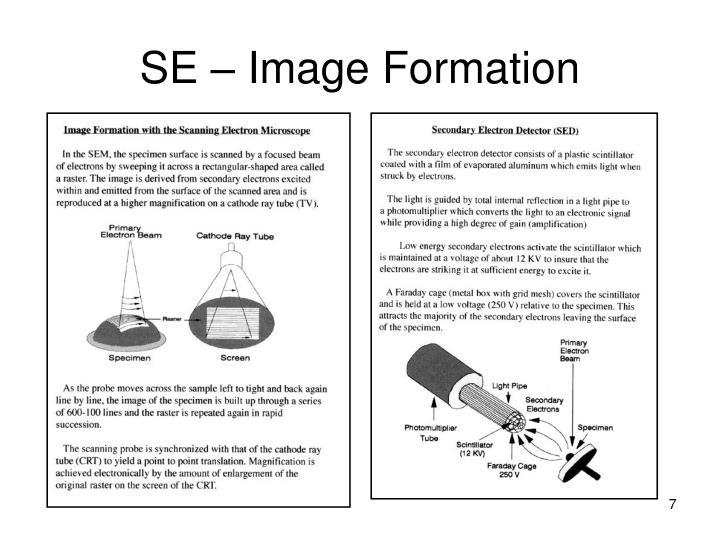 SE – Image Formation