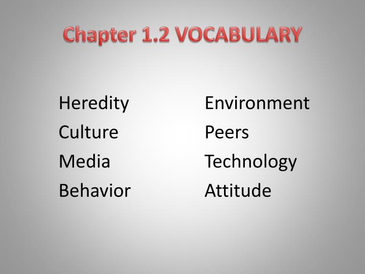 Chapter 1.2 VOCABULARY