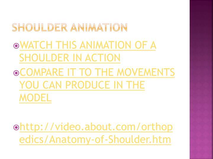 Shoulder animation