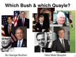 which bush which quayle