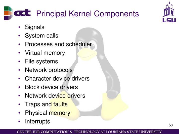 Principal Kernel Components