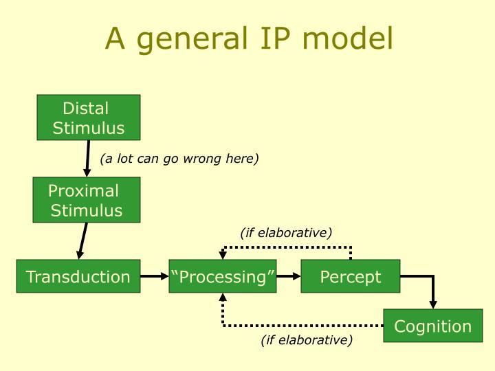 A general IP model
