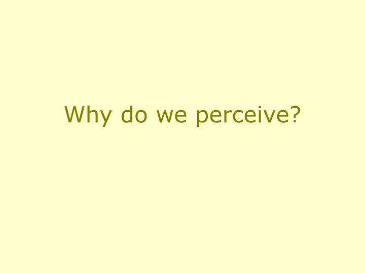 Why do we perceive