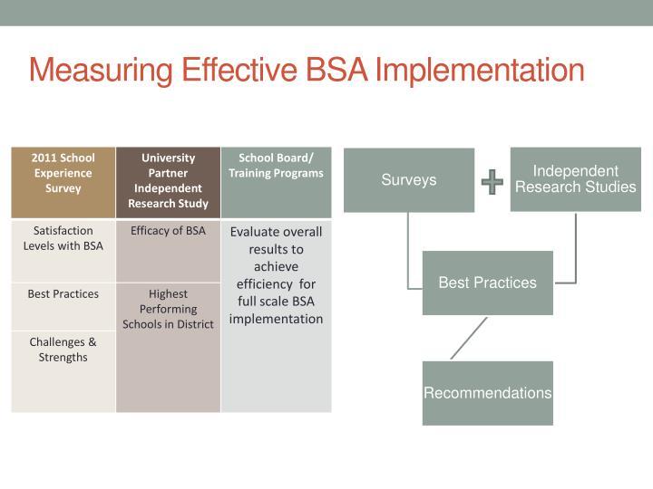 Measuring Effective BSA Implementation