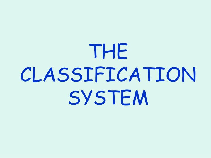 the classification system n.