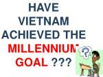 have vietnam achieved the millennium goal